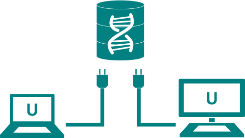 Utilizzare un database condiviso con Softshop